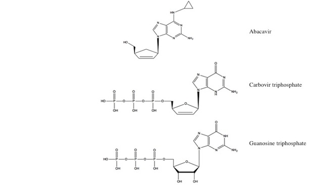 Structures for abacavir, carbovir triphosphate and guanosine triphosphate