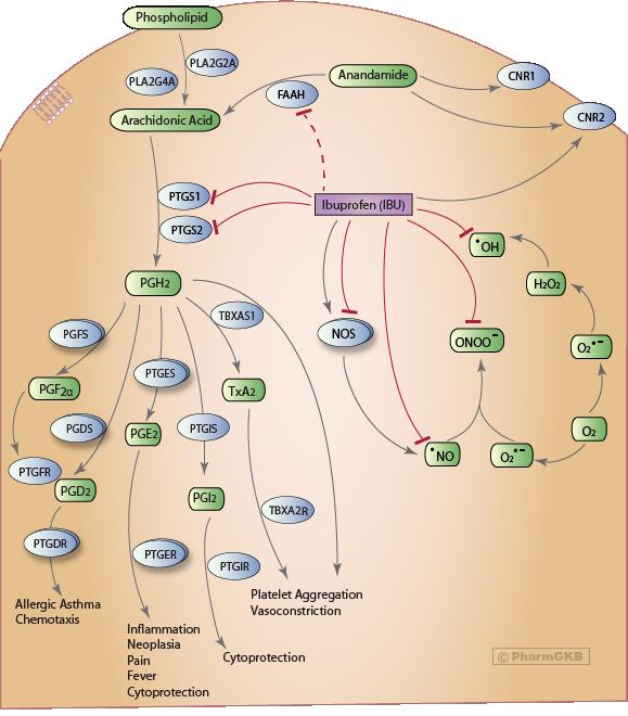 analgesic non-steroidal anti-inflammatory